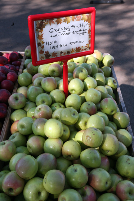 081109-apples-6